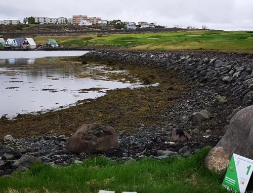 1.Fornubúðir (verslun)