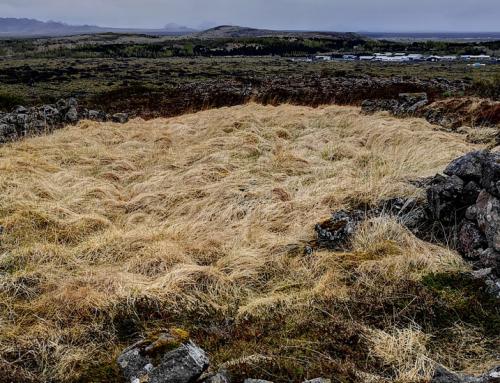 6.Setbergshlíð (fjárhús)