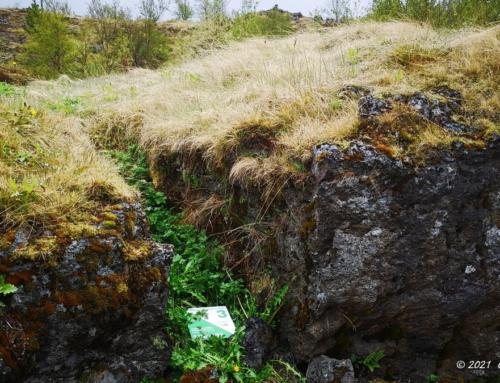 3. Klettahraun – Búrfellshraun